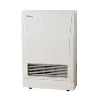 Rinnai - Energysaver 309FT -NG - Includes Direct Flue Kit